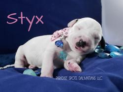 Styx-1w (3)