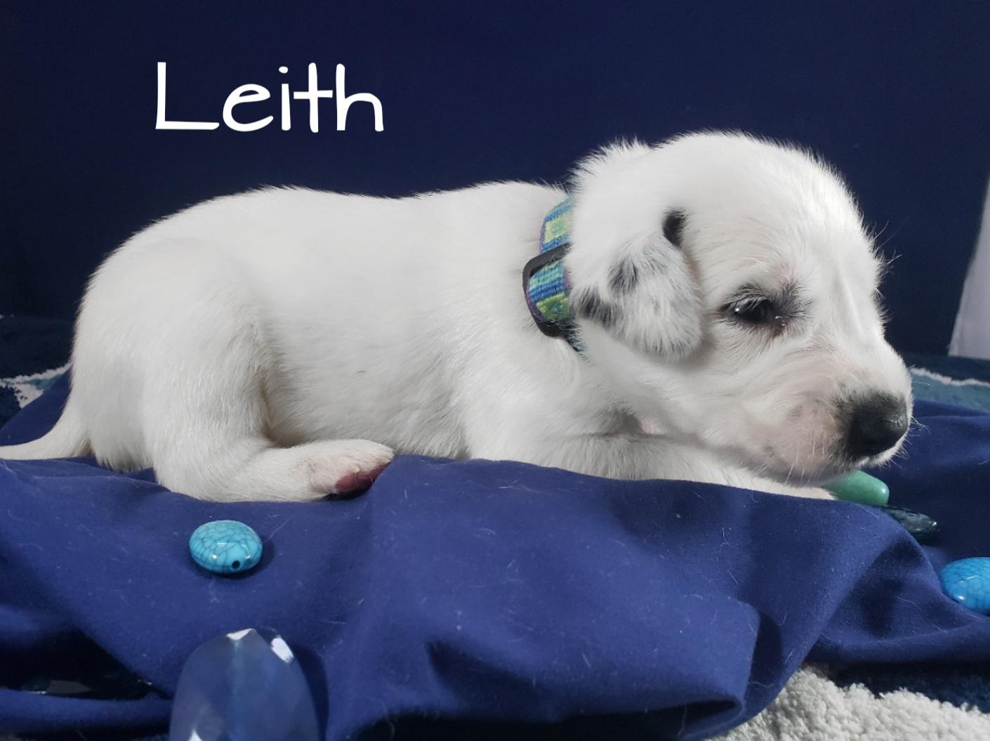 Leith-2w (6)