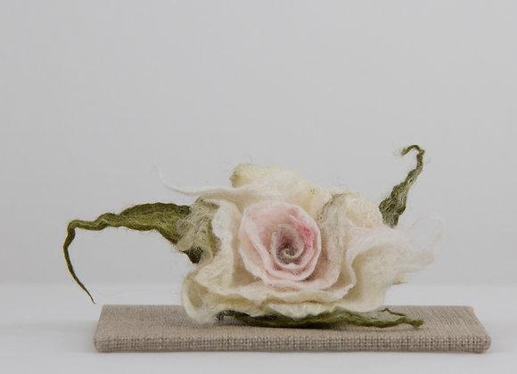 """""""Rosetta"""" rose"""
