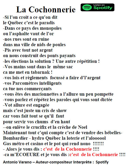 WORDS-172  la cochonnerie.jpg