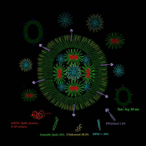 Moderna-mRNA1273 vaccine candidate_Isha