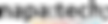 napatech Logo Partner scsit.ch