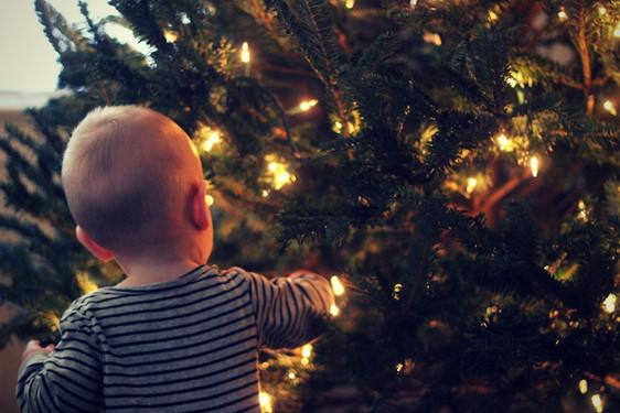 Bébé admirant un arbre de Noël