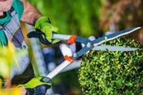servicio_jardineria.jpg