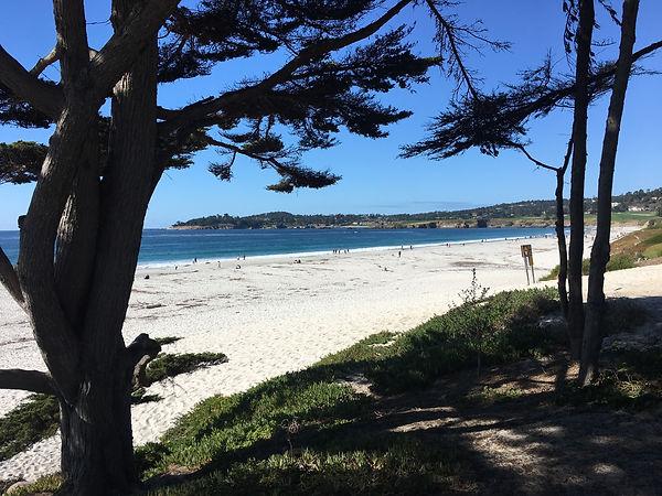carmel beach daylight.jpg