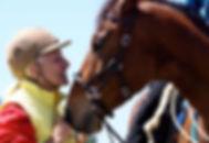 Linda Tellington Jones horses.jpg