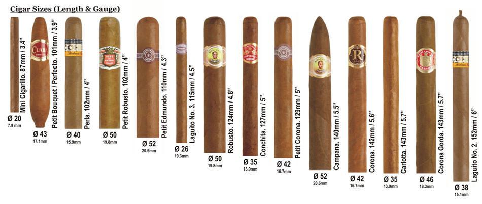 Popular Cigar Sizes