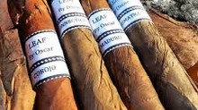 "Decembers Currently Smoking Cigar: Leaf by Oscar Maduro ""The Leaf goes dark"""