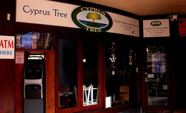 IMG_4212 Cyprus Tree Byron.JPG