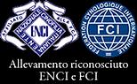 enci-fci2 (1).png