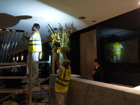 Painting reception ceiling.jpg