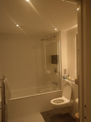 Domestic bathroom 2.jpg