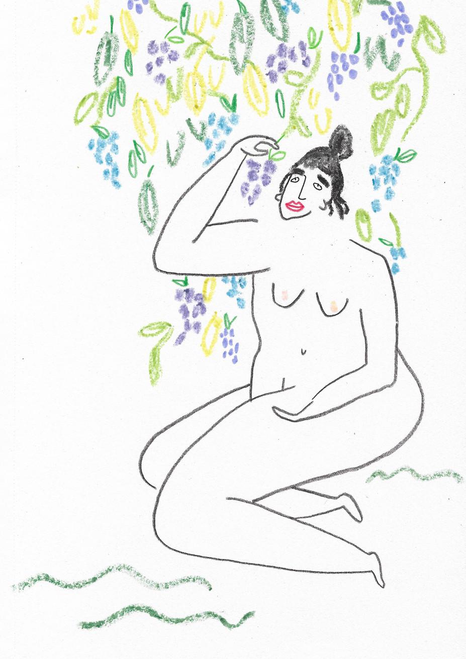 Grape Tree Lady