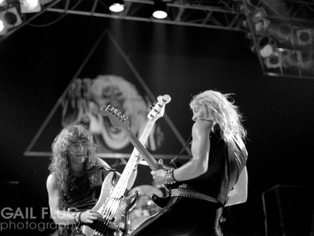 Confessions of a Maiden Fanatic
