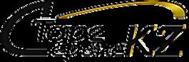 LogoTorgService.png