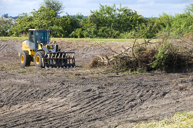 Clearing brush with a heavy loader for a