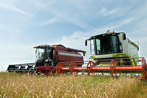 Harvestor-web.jpg
