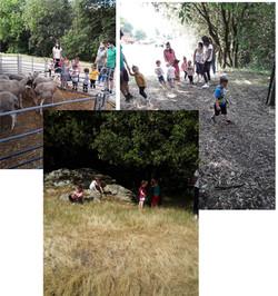 4-Balade sur la ferme (1) (1)