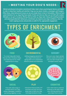 Types of Enrichment
