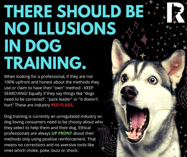 Dog Training Illusionists