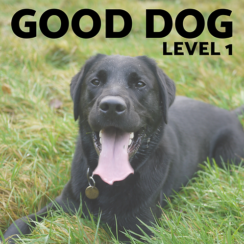 GOOD DOG Essential Skills