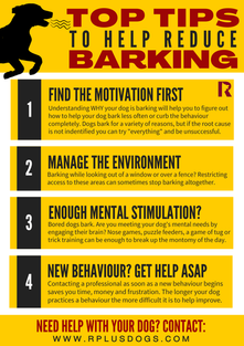 Top Tips : Help Reduce Barking