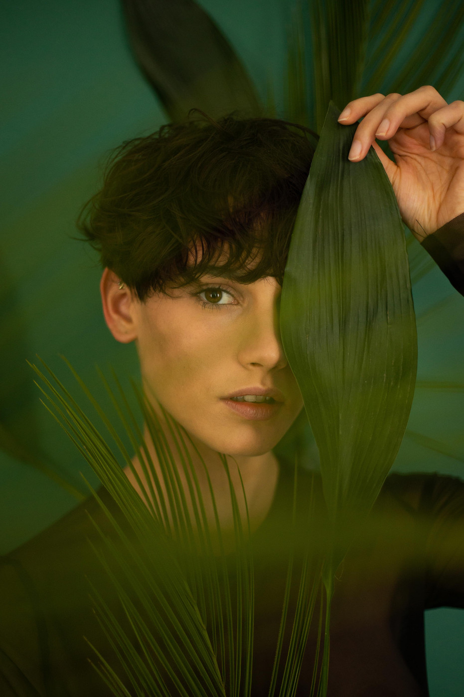 Chlorophylle - Marion Saupin