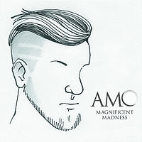 Magnificent Madness Cover.jpg