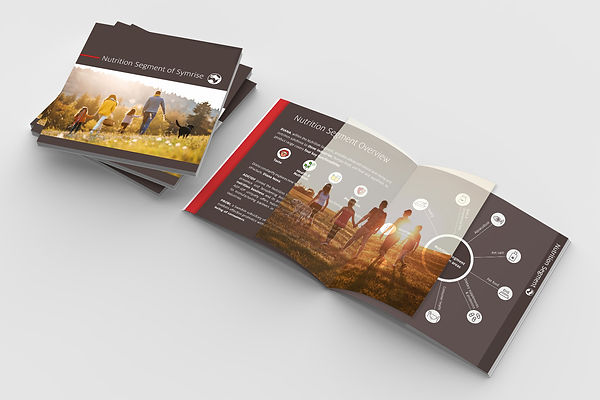Création de brochures à Rennes