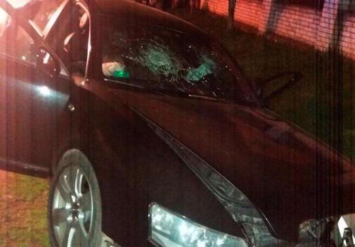 У Рокитному зіштовхнулися «Ауді» і мотоблок. Пасажир авто загинув на місці