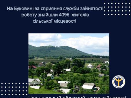 На Буковині роботу знайшли 4096 жителів сільської місцевості за сприяння служби зайнятості