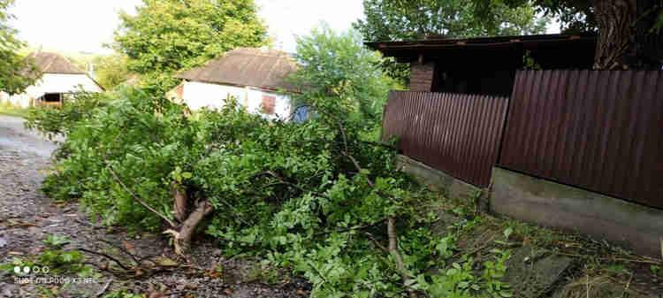 Негода на Новоселиччині: вітер зніс дахи шкіл та приватних будинків