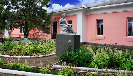 Всі навчальні заклади Новоселицької, Мамалигівської, Боянської, Ванчиковецької громад працюватимуть
