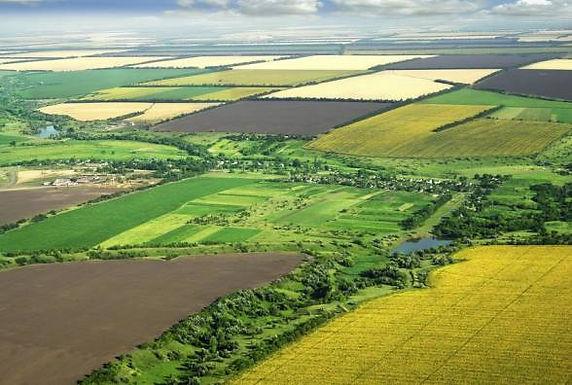 Землекористувачі та власники землі сплатили понад 21 мільйонів гривень.