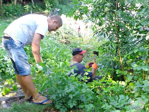 Новоселицькі комунальники прибрали територію довкола ставка у парку