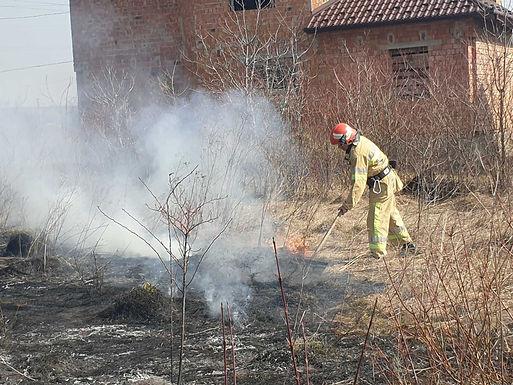 Відео: на Новоселиччині тривають підпали трави