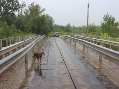 Рівень води в Пруту знижується, але небезпека залишається