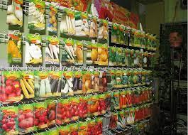 Рекомендації щодо придбання якісного насіння