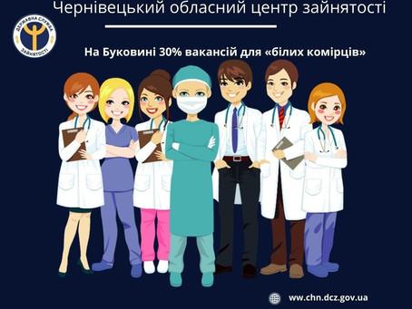 На Буковині 30% вакансій для «білих комірців»