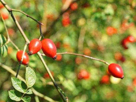 Rosehip  Oil  Organic 125.ml