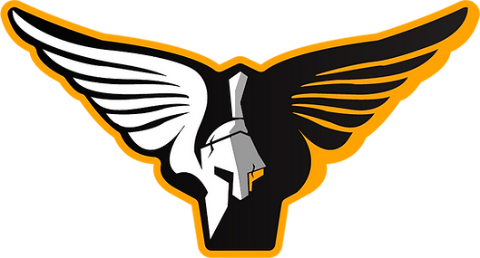WingedSpartan2.png