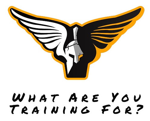 Training For 600 ACFT logo