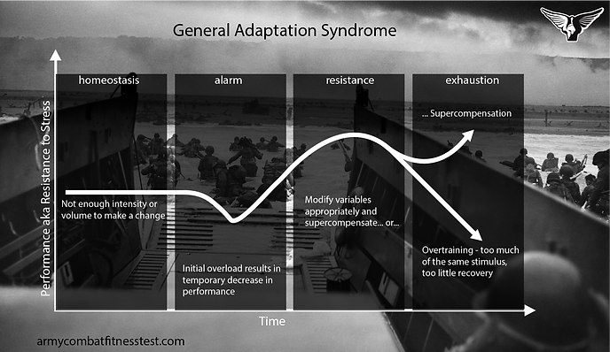 General Adaptation Syndrome, Training For 600, acft, army combat fitness test, acft standards, acft scoring