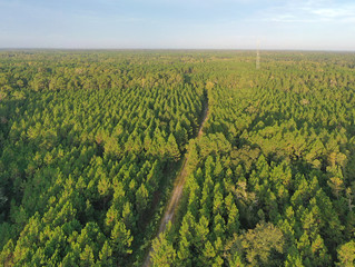 Just Listed! 9,796 Acres