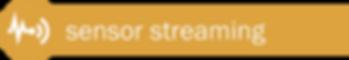 Sensor Streaming