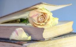 Livre d'or Quintessence Elodie Corrèze Vos avis et commentaites