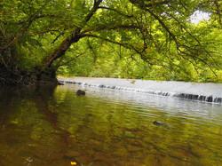 Autour-du-camping-riviere2.jpg