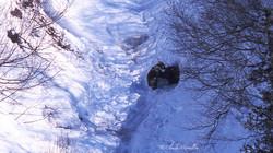 Creuser un trou et ensuite le défendre... des parties de luttes à n'en plus finir pour ses oursons