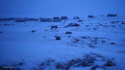 Kangiqtugaapik, après plusieurs jours de blizzard, il est temps d'aller relever les filets...