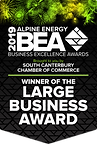 Large Business Award.png